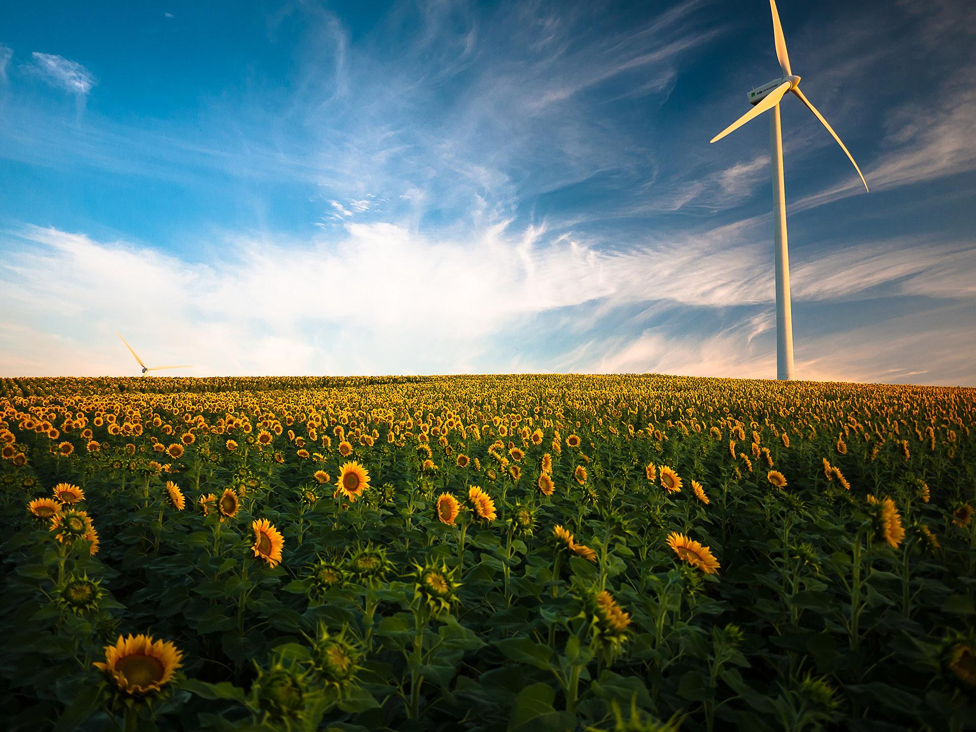 Prijzen stijgen Garanties van Oorsprong en CO2-rechten