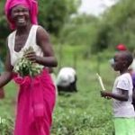 Groenbalans CO2-compensatieproject Kariba Zimbabwe