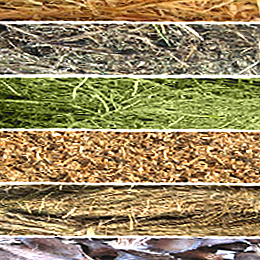 Groenbalans CO2-compensatie en duurzame energie met biomassa